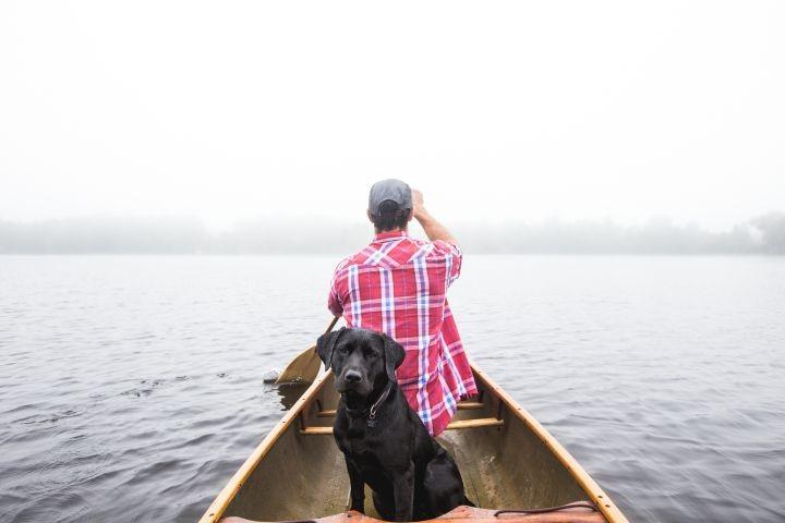 Bootstouren mit Ihrem Liebling