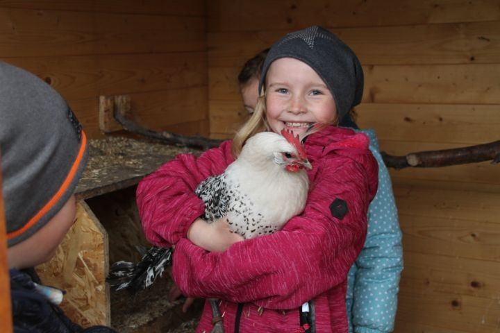 """unser Hühner """"Ostfriesische Möwen"""""""