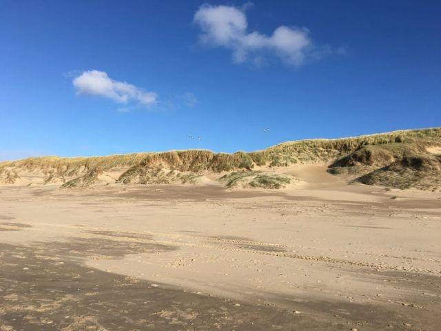Der Strand - ganzjährig mit Hunden nutzbar