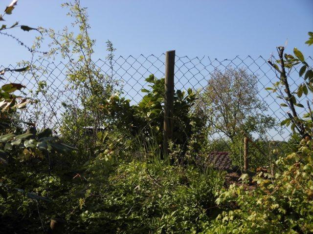 Hinter der Bepflanzung befindet sich der Zaun