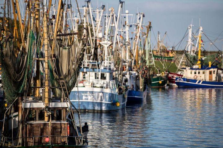 Der Greetsieler Hafen
