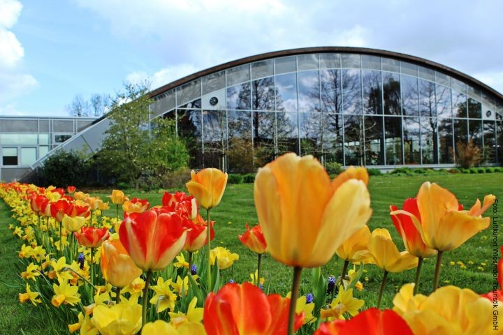 Ausflugsziel: Blumenhalle in Wiesmoor