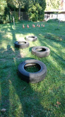 Hunde Trainingsplatz/ Hürdenlauf