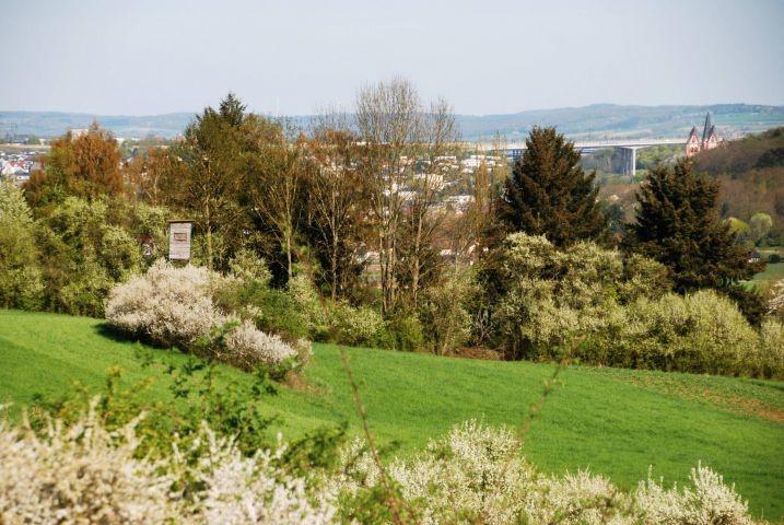 Wanderwege und Radwege mit Blick auf den Limburger Dom und die Lahn