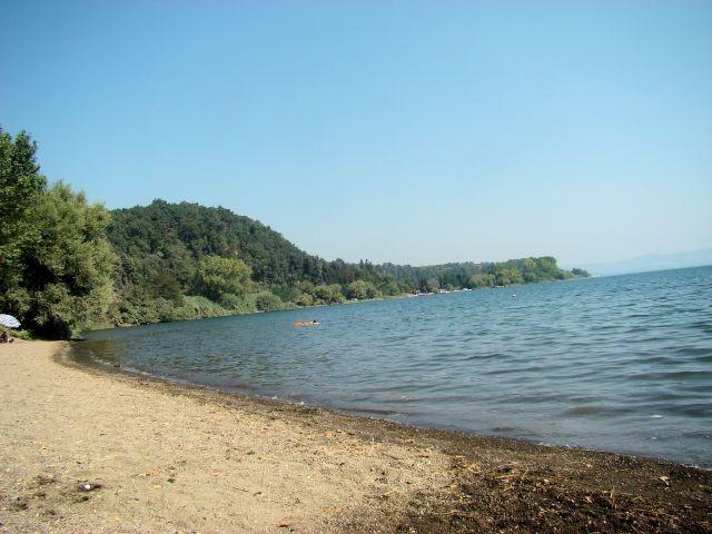 Am Bolsenasee. Es gibt Strand- und Wiesenabschnitte wo Hunde frei herum springen und baden können.
