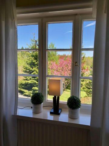 Gartenblick aus dem Wohnsalon