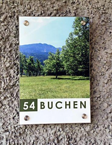 Buchen 54