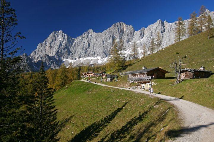 Almengebiet in Ramsau am Dachstein