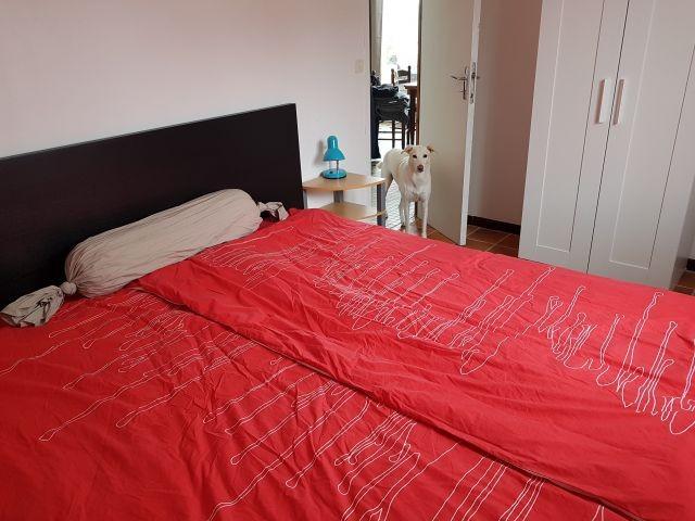 Schlafzimmer groß
