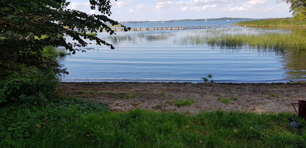 Schweriner See / Hundebadestelle