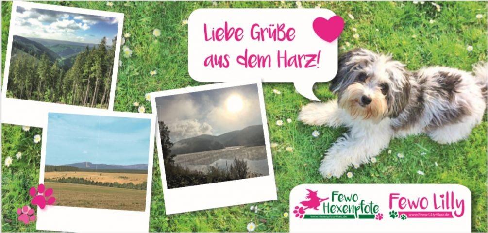 Postkarten für Euch