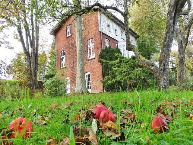 Die historische Wassermühle in der Außenansicht