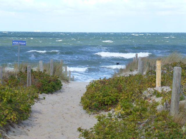 Strandaufgang direkt am Waldrand