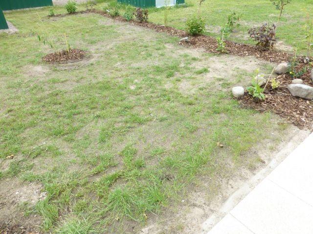 der kleine Gartenanteil wurde eingeheckt ;) und wartet nun auf Wasser