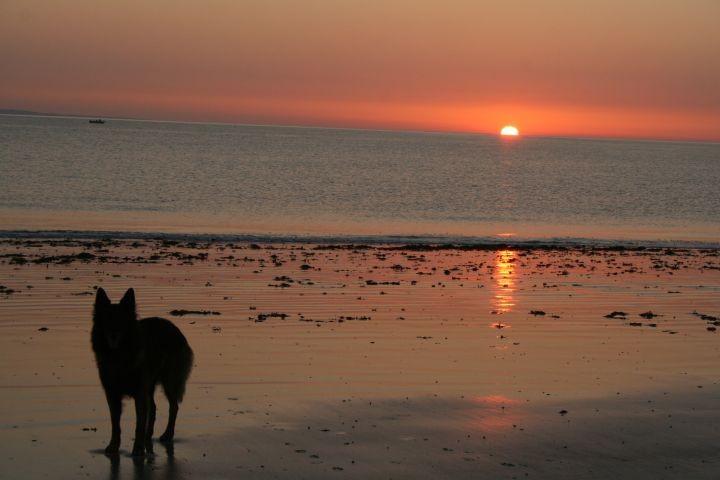 tolle Sonnenuntergänge