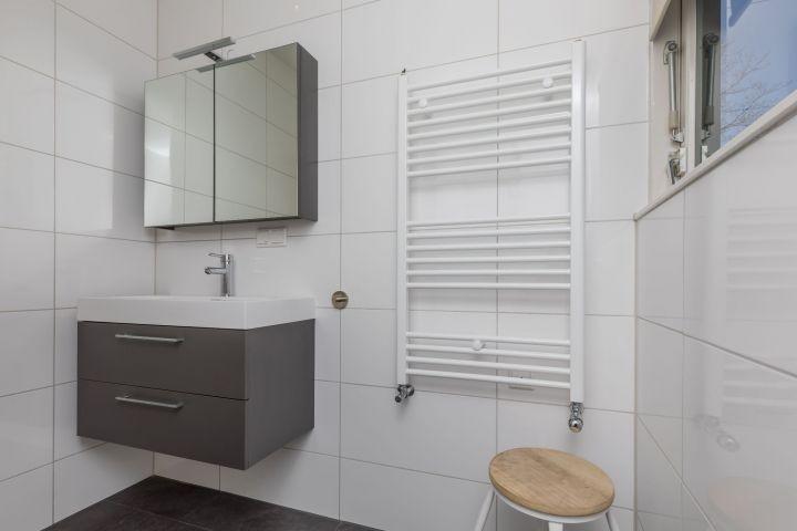 Das neulich renovierte Badezimmer (2017)