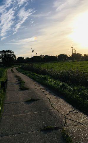 Feldweg im Wohnort