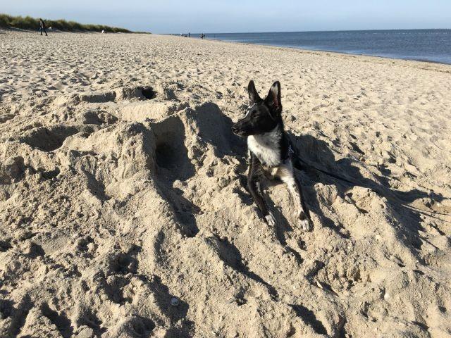 Schönes Bad im Sand
