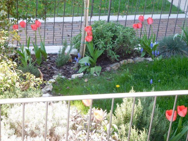 Kleiner Blumengarten
