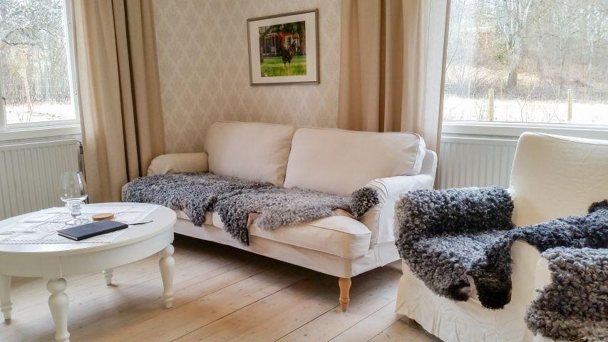 Haupthaus: gemütliches Wohnzimmer mit deutschem TV