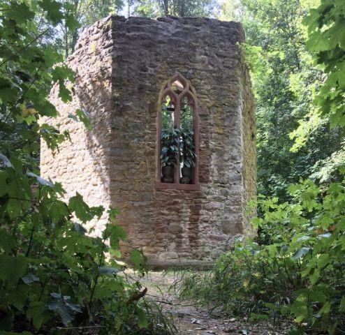 Die alte Kappel im Wald