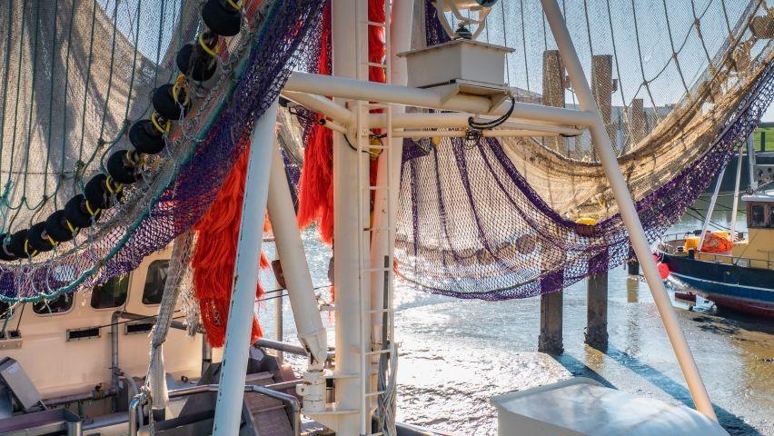 Netze trocknen im Hafen Fedderwardersiel
