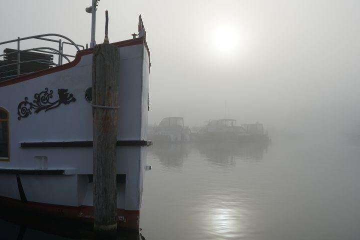 """die """"Europa"""" am Hafen im Nebel"""