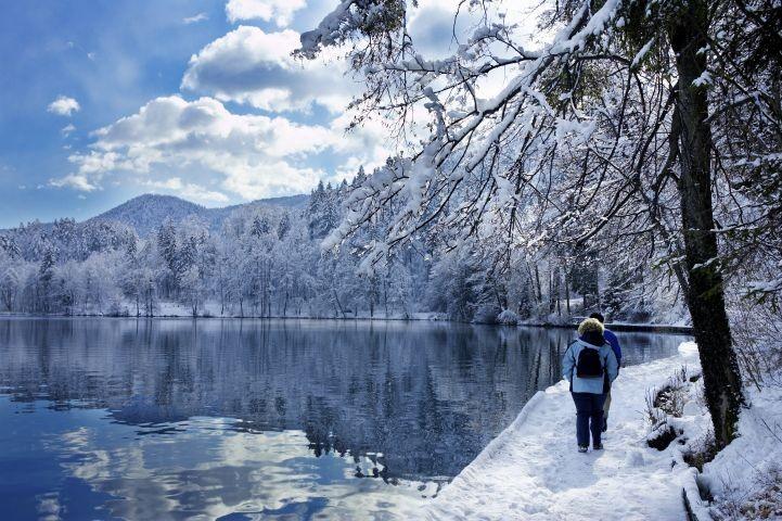 Winterspaziergang am Großen Arbersee