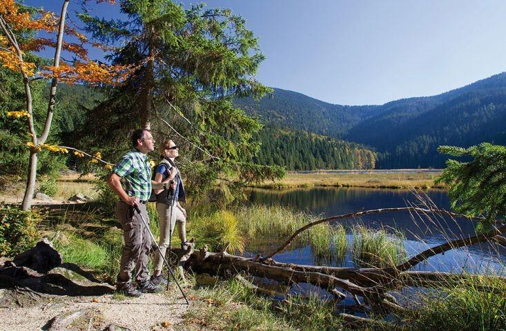 Wanderparadies Bayerischer Wald