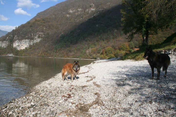 der Idrosee -- ideal für Hunde