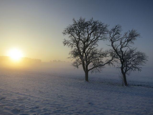 Wunderbare Winterlandschaften ab Hof