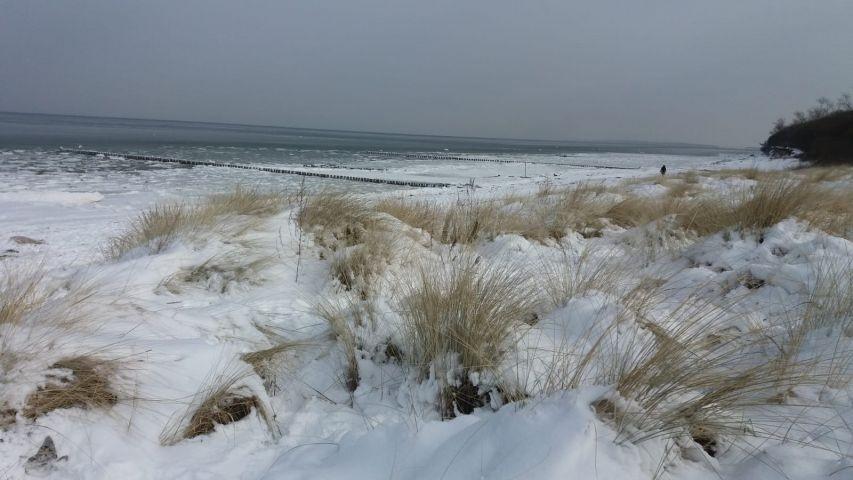 Strand im Winter Richtung Gollwitz