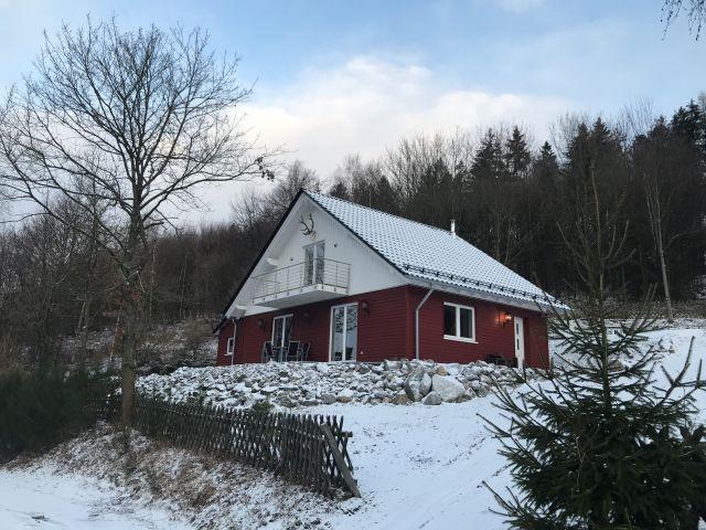 Ferienhaus Himbeerhütte in Brilon