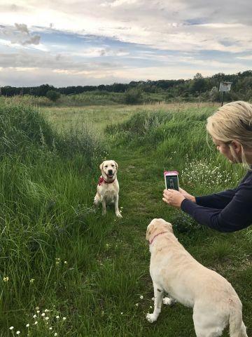Fotoshooting im Naturschutzgebiet nebenan