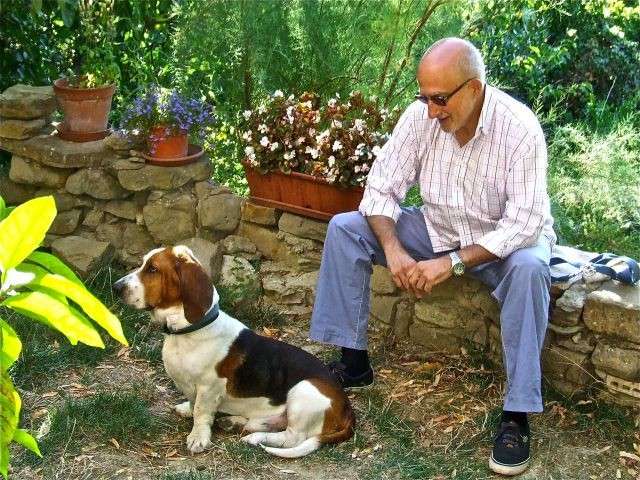 Basset Giuseppe mit Anhang
