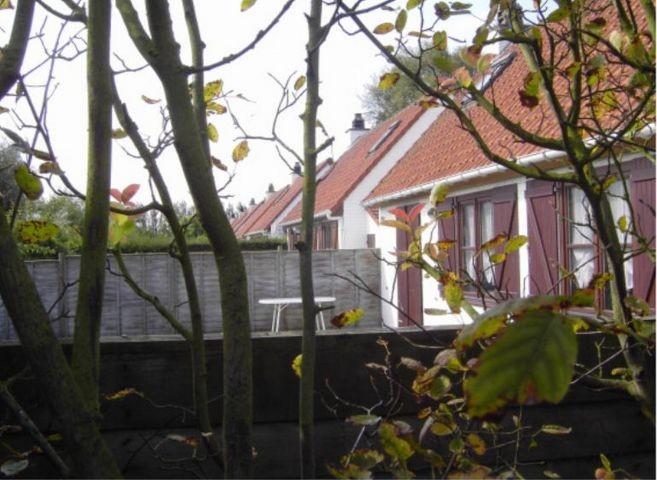 Garten eines Fischerhauses (umzäunt)