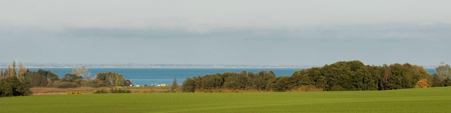 Blick auf Habernisser Bucht