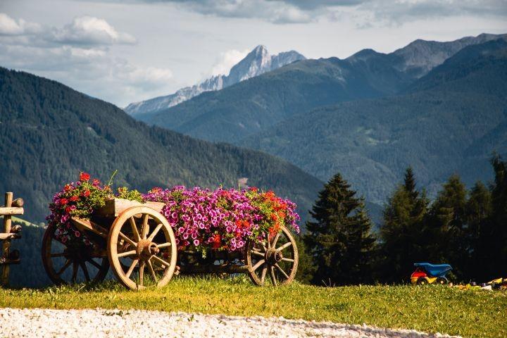 Ausblick mit Blumenwagen