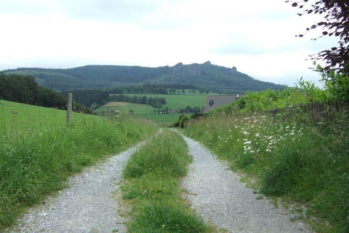 Der Weg oberhalb der Häuser am Wald im Sommer
