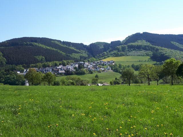 Blick von der gegenüberliegenden Talseite auf die Häuser am Wald