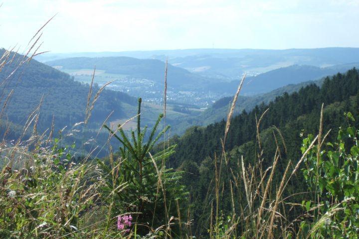 Nach 50 min. Fußweg errreichen Sie diesen Gipfel, den Ginsterkopf, unseren Hausberg
