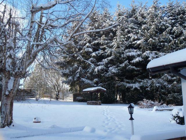 Winterimpressionen - Januar 2019