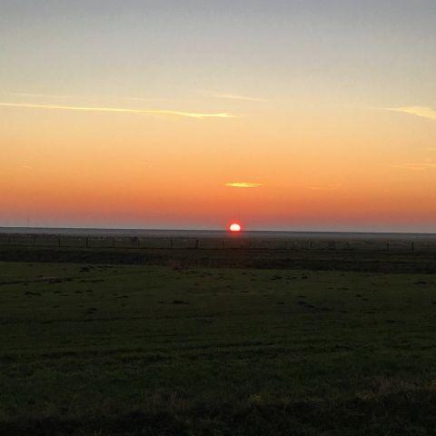Sonnenuntergang am Deich Elpersbüttel - Meldorfer Hafen