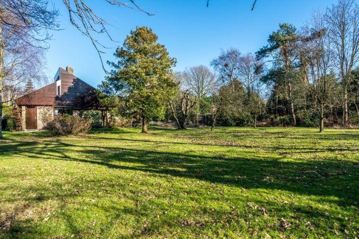 Der riesige Garten (2000 m²) mit Liegen