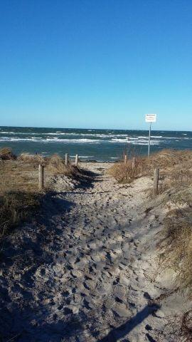 Zugang Strand Schwarzer Busch