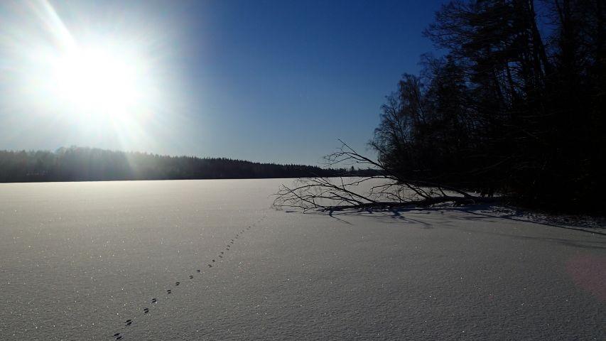 Spuren auf dem gefrorenen See