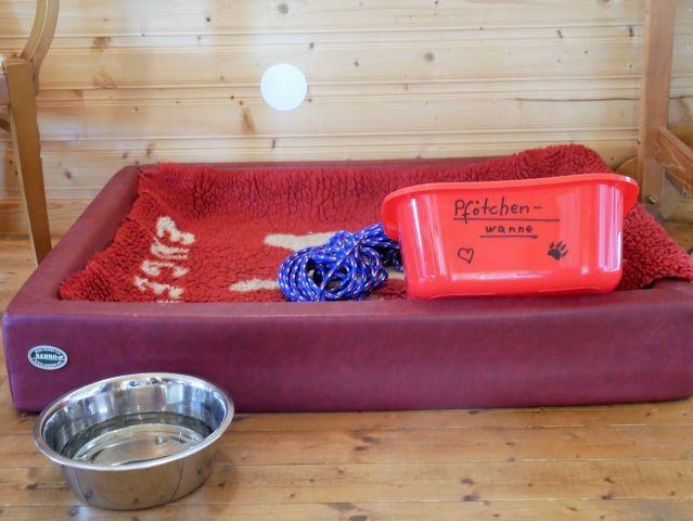 Hunde herzlich willkommen: Körbchen, Wasserschüssel, Schleppleine und Pfötchenwanne warten auf euch