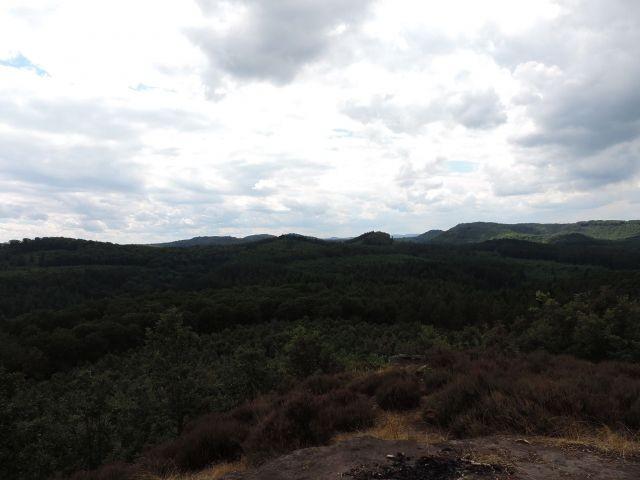 Ausblick in den Pfälzerwald