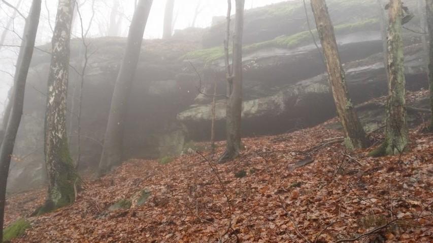 Warthenberg Felsenkrone