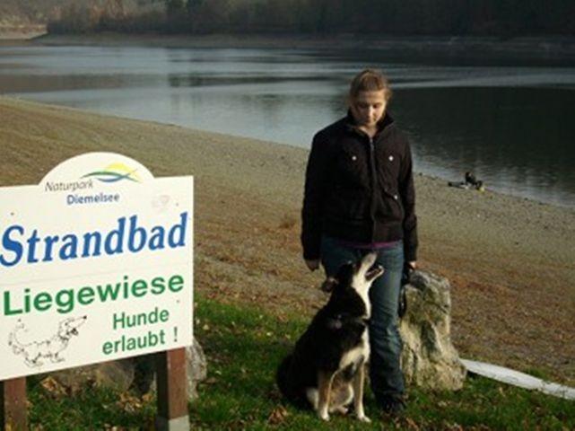 Bewirteter Hundestrand in ca. 25 km Entfernung